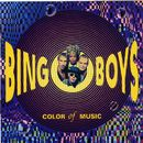 Color Of Music/Bingoboys