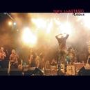 Plasma/Trey Anastasio