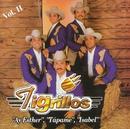 Los Tigrillos Vol. II/Los Tigrillos