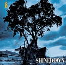 Simple Man (Online Music 93291-6)/Shinedown