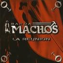La Reunión/Banda Machos