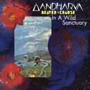 In A Wild Sanctuary/Gardharva/Beaver & Krause