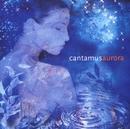 Cantamus Aurora/Cantamus