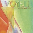 Voyeur/David Sanborn