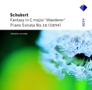 Schubert : Wanderer Fantasy & Piano Sonata No.18  -  Apex/Elisabeth Leonskaja