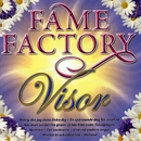 Fame Factory Visor/Various artists