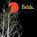 If You Fail We All Fail (1 Track DMD)/Fields