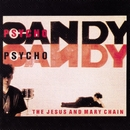 Psychocandy/The Jesus And Mary Chain