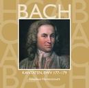 Bach, JS : Sacred Cantatas BWV Nos 177 - 179/Nikolaus Harnoncourt