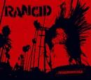Red Hot Moon/RANCID