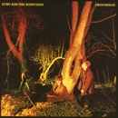 Crocodiles (Expanded) [2007 Remaster]/Echo And The Bunnymen