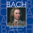Bach, JS : Sacred Cantatas BWV Nos 83 - 86/Nikolaus Harnoncourt