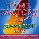 Fame Factory Summertour/Various artists