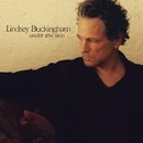 Under the Skin (Bonus Track Version)/Lindsey Buckingham