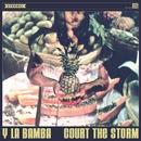 Court the Storm/Y La Bamba