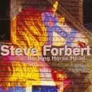 Rocking Horse Head/Steve Forbert