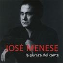 La pureza del cante/Jose Menese