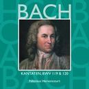 Bach, JS : Sacred Cantatas BWV Nos 119 & 120/Nikolaus Harnoncourt