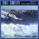 Big Surf/The Sentinals