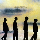 Songs To Learn And Sing/Echo and The Bunnymen