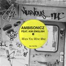 When You Were Mine/Ambisonicz feat. Kim English