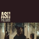 Polaris (DMD EP - all DSPs)/Ash