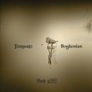 Torquato & Boghosian/Torquato & Boghosian