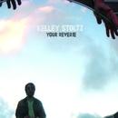 Your Reverie b/w Owl Service/Kelley Stoltz