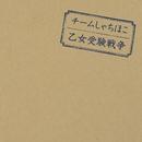 乙女受験戦争/TEAM SHACHI