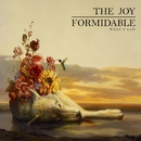 Wolf's Law/The Joy Formidable