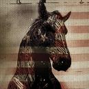 Live Horses (EP)/NEEDTOBREATHE