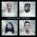 Lost In The Woods/Sugar Glyder