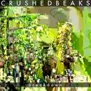 Breakdown/Crushed Beaks