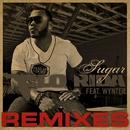 Sugar (Remixes)/Flo Rida