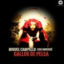 Gallos de Pelea/Miguel Campello