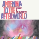 Antenna To The Afterworld/Sonny & The Sunsets