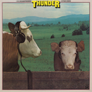 Headphones For Cows/Thunder