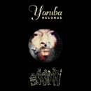 Camera Shy Remixes/Osunlade