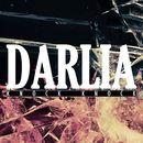 Queen Of Hearts/Darlia
