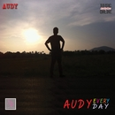 Audy Everyday/Audy