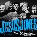 The Collection/Jesus Jones