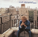 If We Fall in Love Tonight/Rod Stewart
