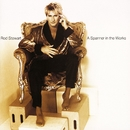 A Spanner In The Works [Expanded Edition]/Rod Stewart