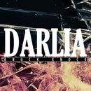 Knock Knock EP/Darlia