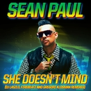She Doesn't Mind (Remixes)/Sean Paul