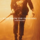 Visit From The Dead Dog/Ed Harcourt