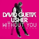 Without You (feat.Usher) [Instrumental Version]/David Guetta