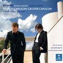 Brahms: Double Concerto & Clarinet Quintet, Op.115/Paul Meyer