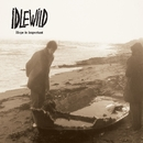 Hope Is Important/IDLEWILD