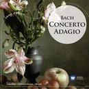 Concerto Adagio: Bach/Andrei Gavrilov